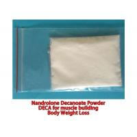 Quality Pharmaceutical Nandrolone Decanoate Steroid CAS 360-70-3 No Side Effect Deca Powder wholesale