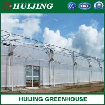 Quality New Design Multi Span Galvanized Anti-UV Plastic Film Greenhouse wholesale