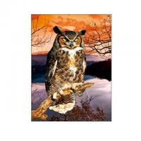 Quality 30x40cm Size 3D Pictures Of Animals 0.6mm PET Material Durable wholesale