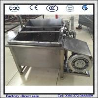 Quality Stainless Steel Small Air Bubble Fruit and Vegetable Washing Machine wholesale