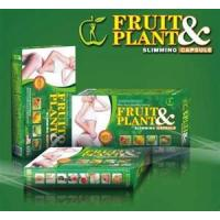 Quality Fruit & Plant New Slimming Pill With Pure Herbal Essence For Suppress Appetite Weight Loss wholesale