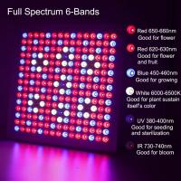 Quality Waterproof Full Spectrum LED Grow Lights With 660nm - 450nm Wavelengh wholesale