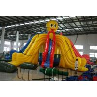Quality hot inflatable water slides,inflatable slide wholesale