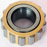 Quality RN205M Eccentric Bearing wholesale