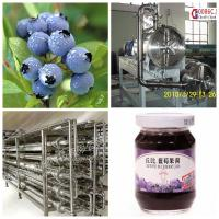 Quality Blueberry Beverage Production Equipment SS304 Material Easy Operation wholesale