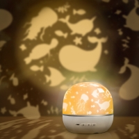 China changeable Light 8gb 1800mah Projector Lamp Quran Player on sale