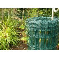 Quality 100 x 50mm Holland Garden Wire Mesh , Green Plastic Coated Wire Border Fence wholesale