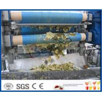 Quality 60-1500T/D Fresh Pineapple Processing Line With Aseptic Bag / PET Bottle Packing Machine wholesale