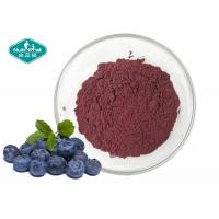 Cheap Natural Fruit Powder Blueberry Extract Powder for Antioxidant for sale