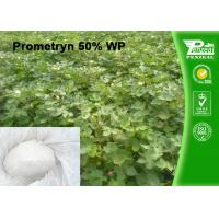 Quality Cas 7287-19-6 Prometryn 50% WP Garden Weed Killer Selective Systemic Herbicide wholesale