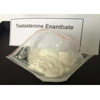 Quality White Powder Testosterone Steroid Test Enanthate CAS 315 37 7 Male Sex Hormone wholesale