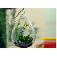Quality Hanging Teardrop Glass Terrarium , Hanging Glass Teardrop Candle Holders wholesale