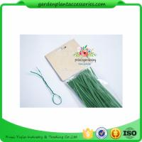 Quality Green Tree Climbing Garden Plant Ties , Plastic Tree Support Ties wholesale