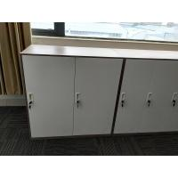 Quality Office furniture storage clothes two door steel locker for staff gym wholesale