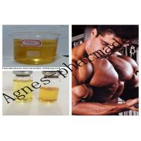 Quality Nandrolone Decanoate Injectable Steroid Solution DECA 250mg/ml Oil wholesale