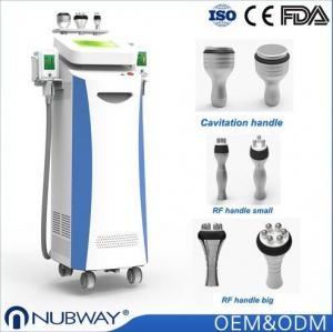 China NEW technology SLIMMING Coolshape Cryolipolysis freeze fat machine on sale
