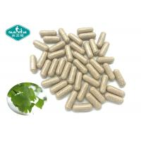 China Ginkgo Biloba 120mg Capsule for Supporting Healthy Brain Function & Circulation on sale
