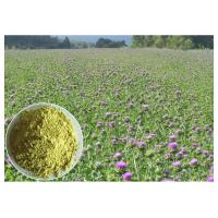 Quality Light Yellow Herbal Plant Extract From Milk Thistle Seed Lower Blood Fat CAS 65666 07 1 wholesale