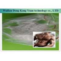 Quality 99% Halotestin Steroid Hormone Powder 76-43-7 For Get Muscle wholesale