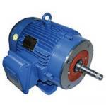 WEG Close-Coupled Pump Motor