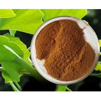 China Ginkgo Biloba Extract of USP standard, EP standard on sale