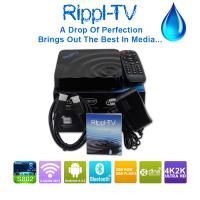 Quality 2015 best selling indian iptv box No monthly payment free tv channels tv box wholesale