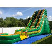 Quality Professional Giant Inflatable Slide For Inground Swimming Pools Oem Service wholesale