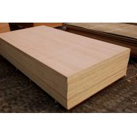 China beech finger jointed panels on sale