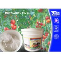 Cheap Aubergine Granule Systemic Fungicides With Protective And Curative Action for sale