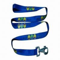 China Custom Dog Leash/Collar with Big Carbine Hook, Made of Polyester/Nylon, OEM Orders are Welcome on sale