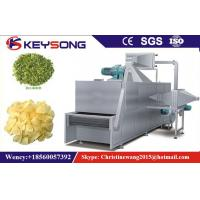 China SteamTunnel Fruit Drying Equipment , Stainless Steel Fruit Dehydration Machine on sale
