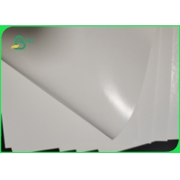 China 250gsm 300gsm PE Coating White Paper Board For Pizza Boxes Waterproof on sale