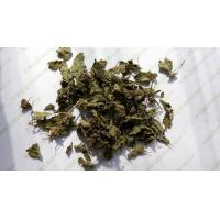 Quality Rabdosia rubescens leaves Tea Herba Rabdosiae dried well good for throat release pain Dong ling cao wholesale