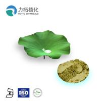 Quality Antifungal Plant Extracts /  Lotus Leaf Extract HPLC UV For Losing weight wholesale