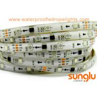 DC12V Addressable  5050 Flexible LED Strip Light , Silicon Waterproof  IP65  LED  Tape