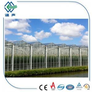 Quality 4mm Rectangular , Square greenhouse glass panels , toughened laminated glass wholesale