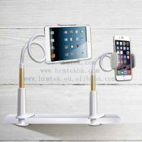 China New Introduction Wholesale Long Arm Goose Neck Lazy Flexible Tablet or pad Holder on sale