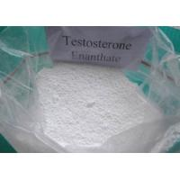 Quality Effective Testosterone Enanthate powder and Injectable liquid for Muscle Building CAS 315-37-7 wholesale