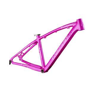 Quality 26 inch Aluminum Bike Frame Lady