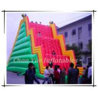 Quality Funny Inflatable Mountain Climbing (CY-M2055) wholesale