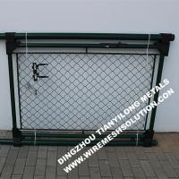 Quality RAL6005 55mm Chain Link Fence , Wire Mesh Fence Panels Gate For Garden wholesale