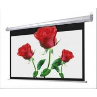 China electric projector screen/projector screen/projection screen on sale