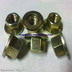 Quality flange nut (LT127) wholesale