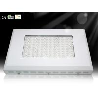 Quality Horticulture Lighting Square LED Plant Grow Lights growth Room Lamp with Red and Blue LED wholesale