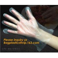 Quality Disposable Plastic Polythene PE Gloves Cleaning Prepare Food,STERILE TWO FINGER GLOVES IN POLYETHYLENE, small packing PE wholesale