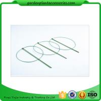 Quality 3 Rings Green Garden Plant Supports , Circular Plant Supports Plastic Coated wholesale