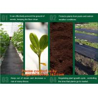 Quality Agricultural plastic ground cover weed mat, pp weed control mat, for greenhouse and outer use,ground cover, weed mat, ma wholesale