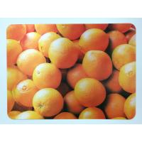 Quality Animal 3D Lenticular Plastic Placemat For Promotion 28 * 38cm wholesale