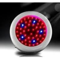 Quality Red blue yellow 50W 300MA led plant growing light Systems 85 - 264V for hydroponic wholesale