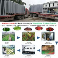 Quality Vacuum cooler for fresh vegetables, fruits and flowers rapid cooling after harvest wholesale
